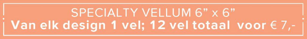 Specialty vellum 6 x 6