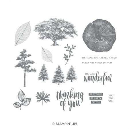 Stampin Up Rooted in Nature